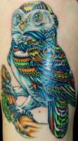 Owl in Full Color by JessicaCanvas