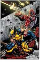 Wolverine, Deadpool by toddrayner