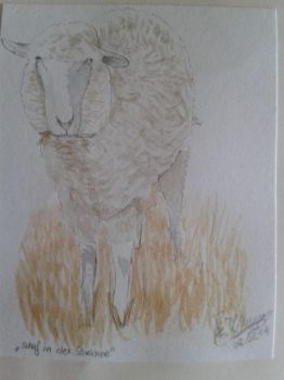Sheep in the savanna by Akid4