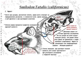 Tutorial_Head_Smilidon_Fatalis by Snega-re-Scardlieng