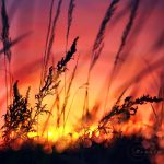 burning sky by Orwald