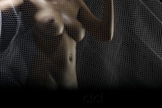 thenet by cici-lisa