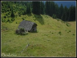 House by flendurica