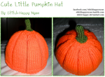 The Cute Little Pumpkin Hat by Stitch-Happy