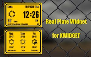 Real Plate (flip) Widget for xwidget by jimking