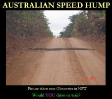 Australian Speed Hump by OfficiallyAbi