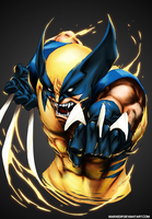 Wolverine - Marvel by MarxeDP
