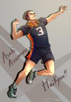 Haikyuu!! / Ace of Karasuno by Mushstone