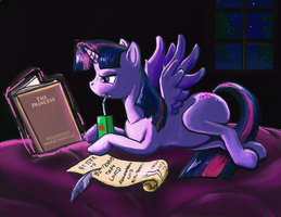 Is there a book about being a princess? by BuddyDharma