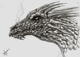 20 minuet Dragon head by TicChallis