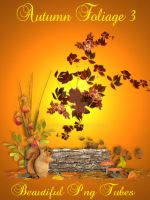 Autumn foliage 3 PNG Collection by kayshalady