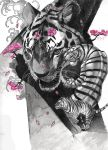 Tigers by mSapia