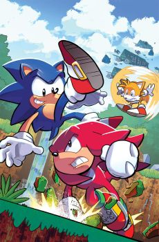 Sonic the Hedgehog 291 Variant by herms85