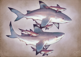 Blacktip Sharks Family by 6Doug9