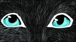 Cat's face by Aguawolf