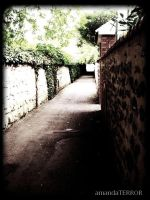 Lonely Walkway by amandaWAY