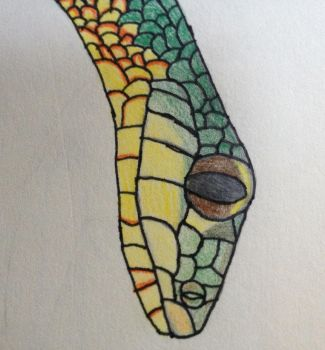 Ribbon snake head by TheWitchAuthor