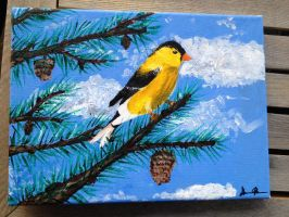 American Goldfinch by OPENINGART