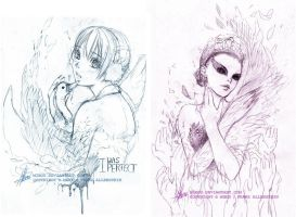 White + Black Swan - Sketches by mibou