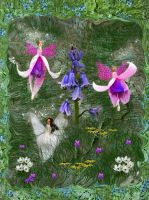 Flower Fairies by LindArtz