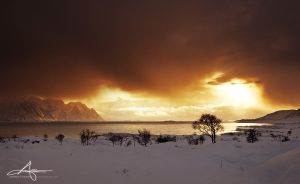 Ominious Winterday by Stridsberg