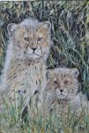 cheetahy cubs on watch by acrylicwildlife