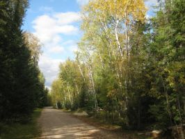 Country Road by BababoCopyrights