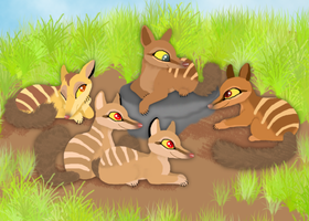Numbat lionesses ~ Entry for Albinoraven contest by RIOPerla
