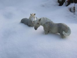 Whats all the white stuff? by Leader-of-a-herd