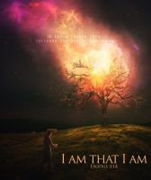 I am that I am by kevron2001