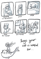 Uses for cats by kangel