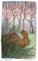 Rainy Day Rabbit - sketch by emla