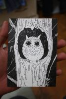 Day Owl by monku696