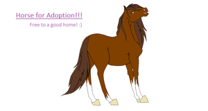 Horse Adoptable!!!! CLOSED! by HonchoFreddy
