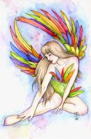 Rainbow Bird of Happiness by Maria-van-Bruggen
