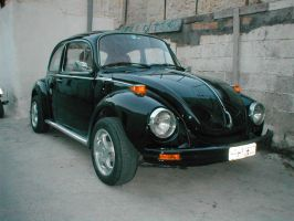 My VW Beetle by makrivag