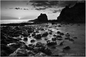 Pura Vida- BW by tourofnature