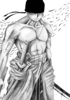 Roronoa Zoro - New World by HoRoHoRoHoRoHoRo