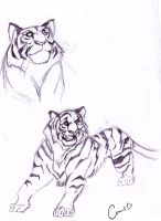 Tiger Sketch by Simply-Ceres