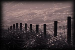 Scottish border II. by FaiblesseDesSens