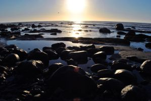 Tidepools before sunset by fosspathei