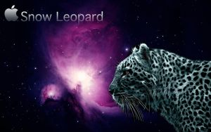 Snow Leopard by Macuser64