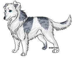 .pixel. Rio Pixel Dog for Quincy by LindsayPrower