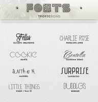 New Fonts [ #2 PACK ] by tropicsong