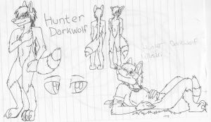 2012 Hunter Ref Sheet 'WIP' by HunterDarkWolf