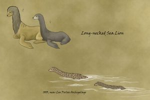 Long-necked Sea Lion by WSnyder