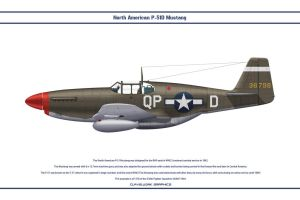 Mustang USAAF 336th FS 1 by WS-Clave