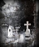 Where the dead are living... by ansdesign