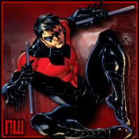 Nightwing Avy by kristiano812