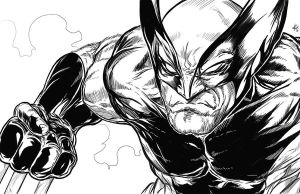 Wolverine sketch - me by ElvinHernandez